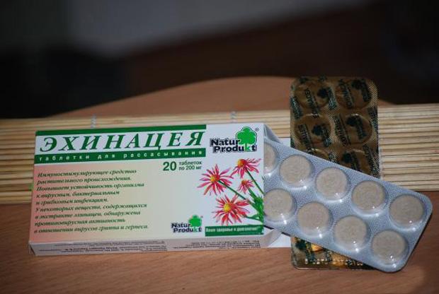 Эхинацея - таблетки