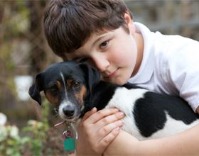Ребенок с домашним животным