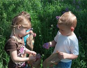 Дети гуляют на природе